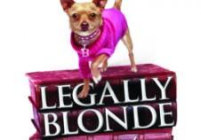 legally blonde 270_0